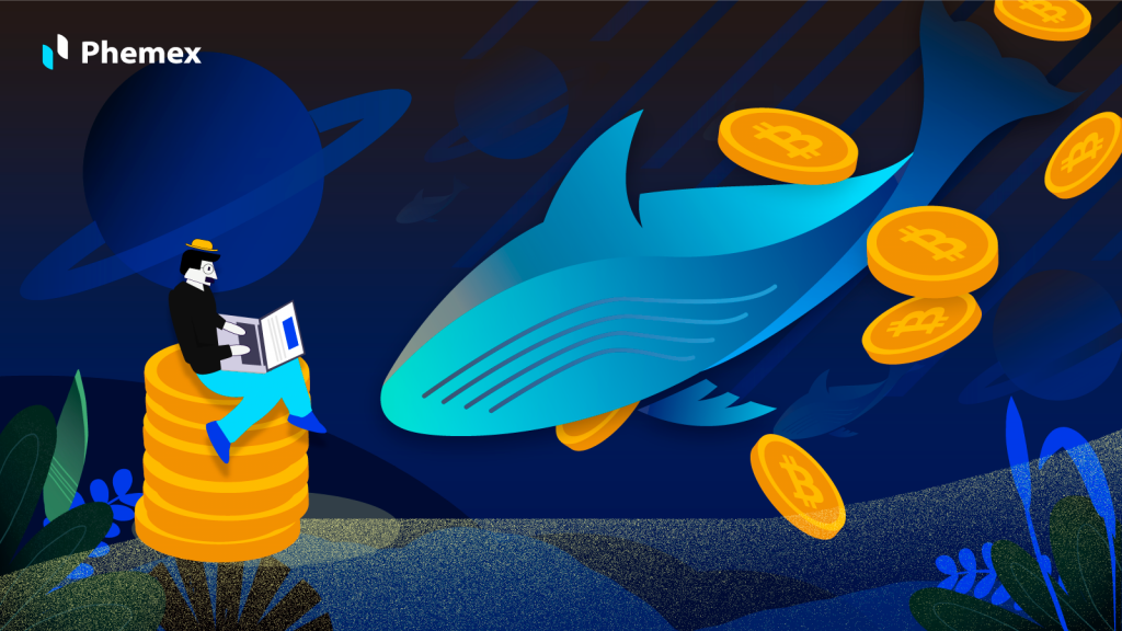 What Are Crypto Whales And Why Do They Matter?
