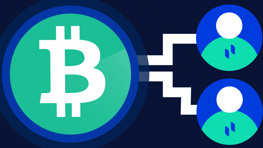 Double Spending: How Does Bitcoin Prevent Double-Spending?