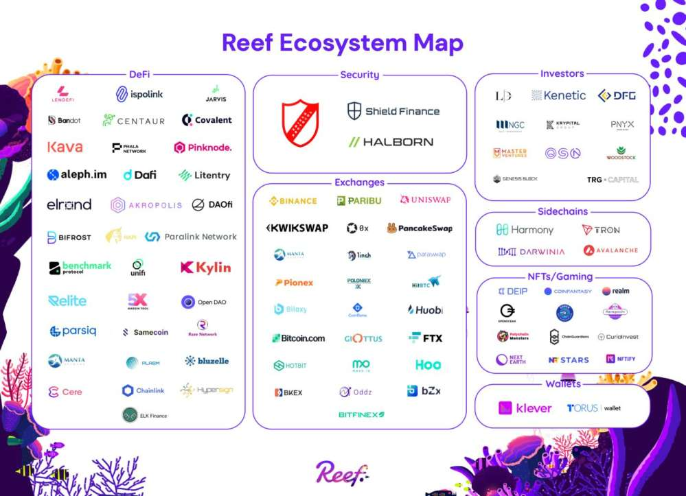 The Reef Finance Ecosystem